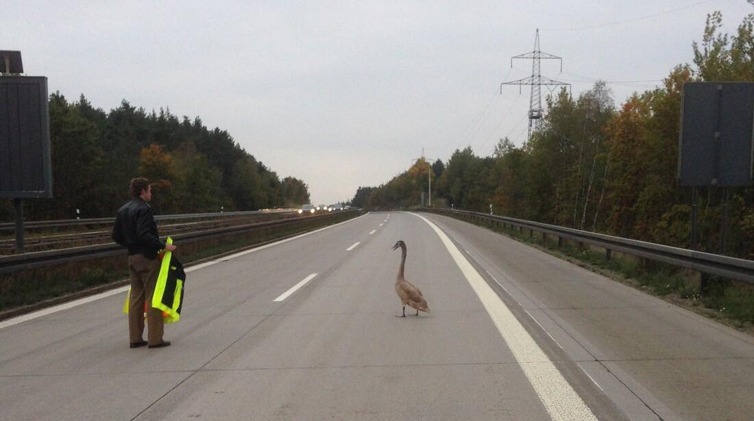 © Polizei Weiden