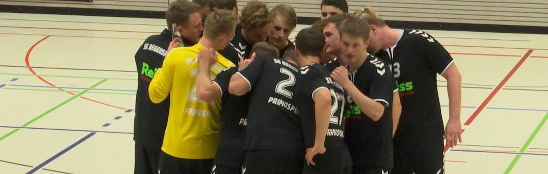 Sg Regensburg Handball