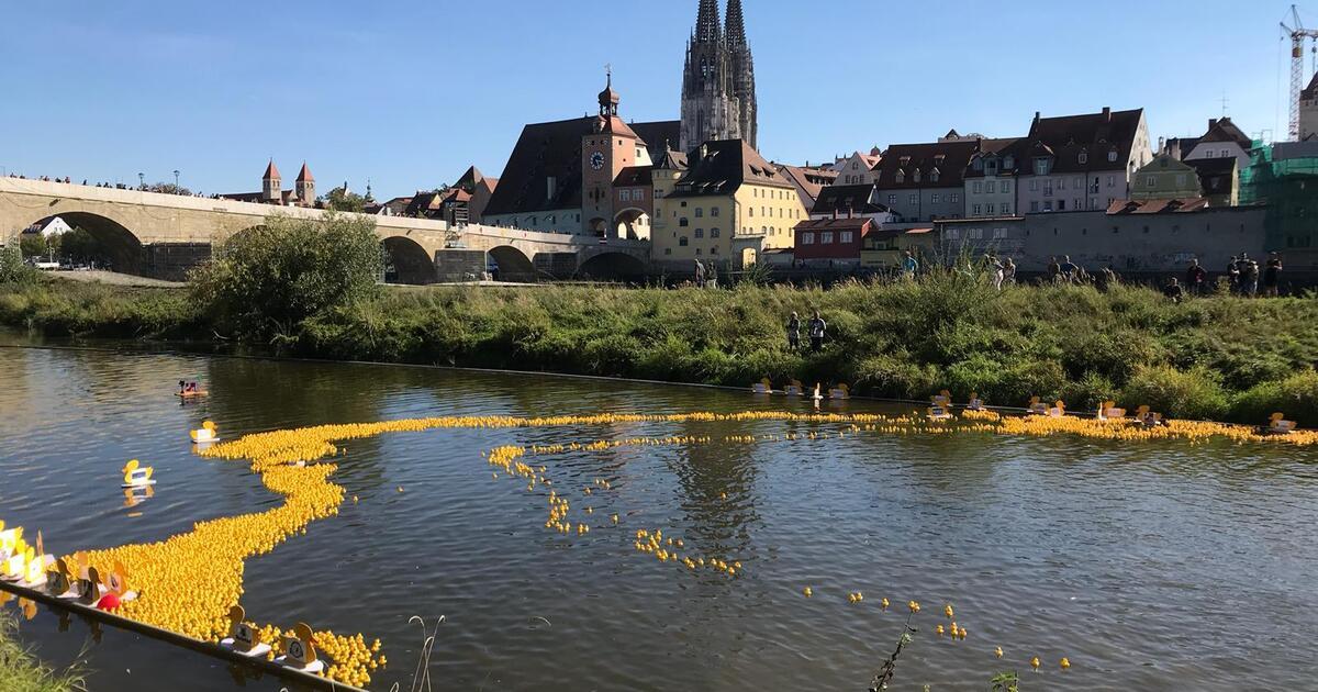 Entenrennen Regensburg